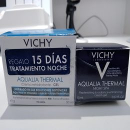 Vichy4